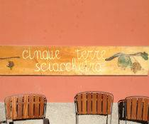Where to taste Cinque Terre wines